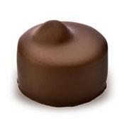 Holy Chocolate Hazlenut Gourmet Swiss milk Chocolate Truffle