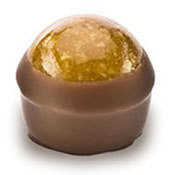 Holy Chocolate Caramel Hazelnut Gourmet Chocolate Truffle